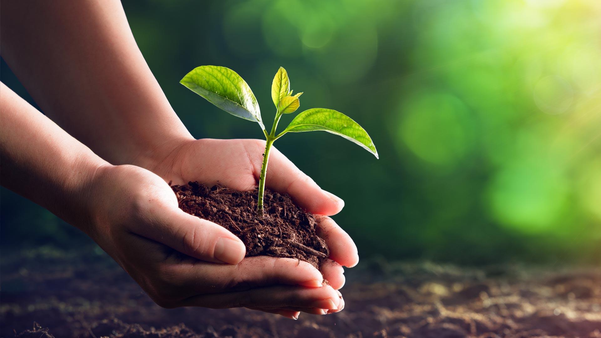 VermögenPlus Nachhaltig